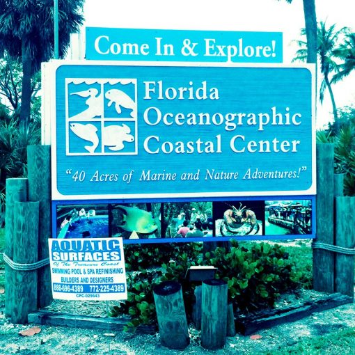 The Oceanographic  Coastal Center