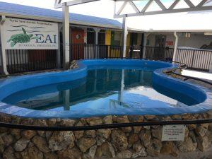 Commercial Pool Resurfacing | Epoxy Pool Paint